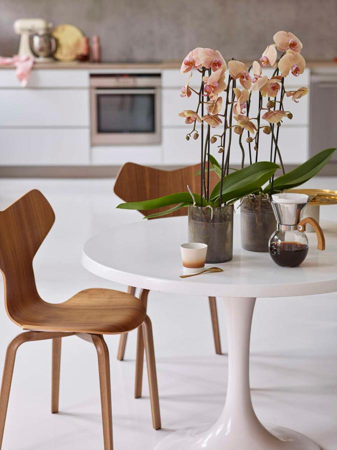 InteriØrtips – interiØrinspirasjon orkide pÃ¥ kjøkkenet